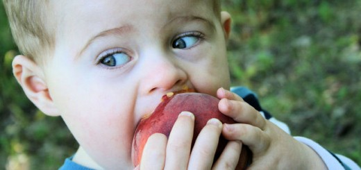 little-boy-eating-a-peach-1-1429637-639x426